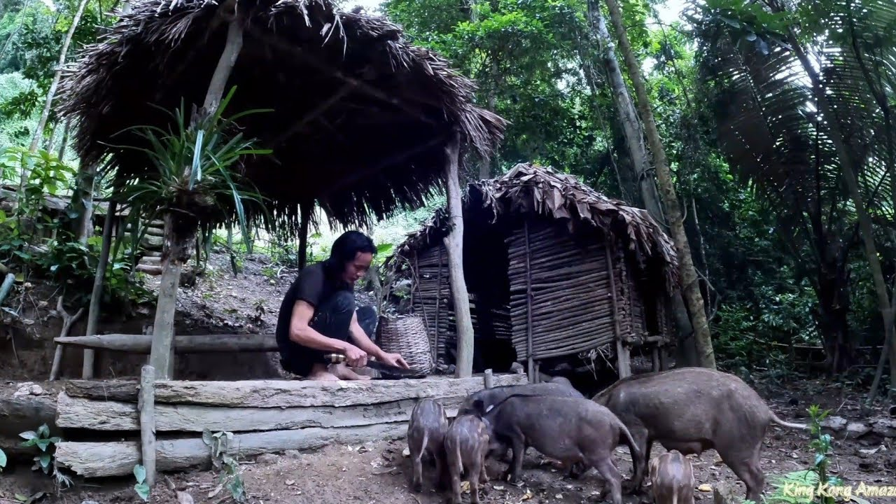 Ready For The Migration To A New Land, Survival Instinct, Wilderness Alone, survival, Episode 155