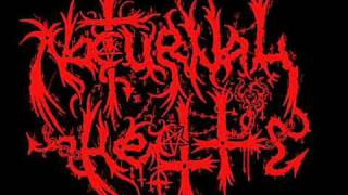 Nocturnal Hell - Nocturnal Hellfucker Attack