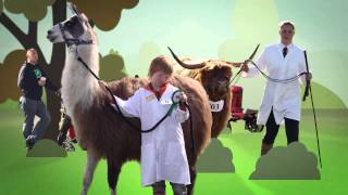 The Royal County of Berkshire Show 2014 Advert YouTube 1080p