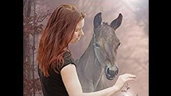 Wie ein Pferd zum Problempferd wird - eine Geschichte zum Nachdenken (Buchempfehlung)