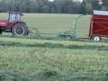 5th cutting of hay, farm girl