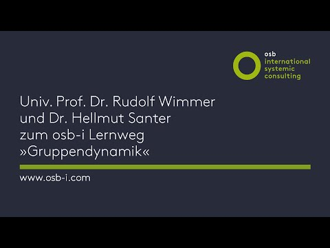 osb international - Rudolf Wimmer und Hellmut Santer »osb-i Lernweg Gruppendynamik«