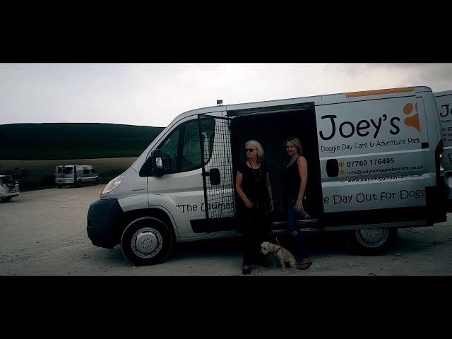Introducing the Doggie Bus @ Joey's Doggie Day Care