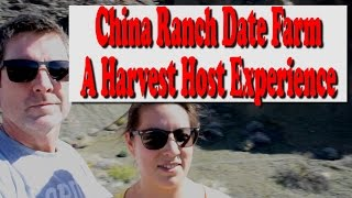 RV Living: Harvest Host | China Ranch Date Farm Day 3 | VLOG 010