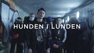 Hunden i Lunden│Katten i Trakten (PARODI)