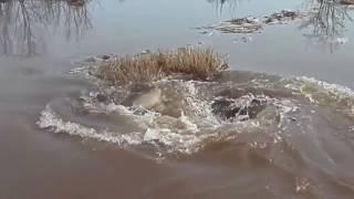 Video Fenomen neasteptat  intr un lac din Letonia Gaura Nearga ? download MP3, 3GP, MP4, WEBM, AVI, FLV Desember 2017
