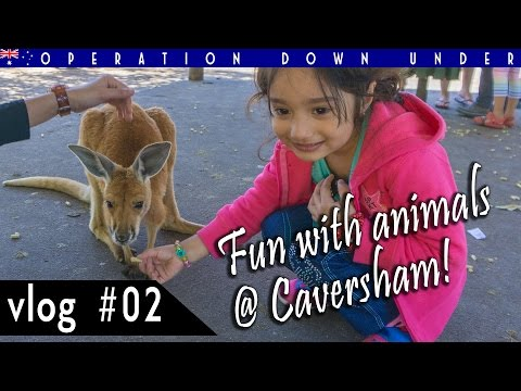 AU VLOG #02 : Fun with animals @ Caversham Wildlife Park, Perth