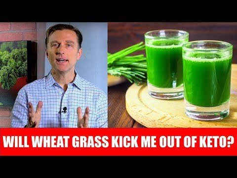 Will Wheatgrass Juice Powder Knock Me Out of Ketosis?