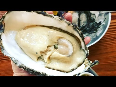 Surf & Turf With GIANT OYSTER At Cowford Chophouse | Jacksonville, Florida