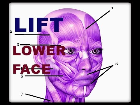 LIFTING Lower Part of Face by MASTICATION ISOMETRIC Technique- Combined with FACIAL FLEX device