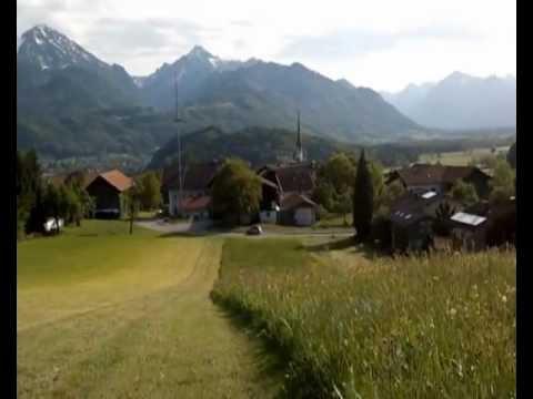 Бавария. Наши шнауцеры на альпийских лугах.