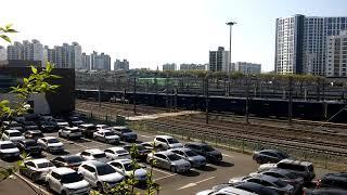 온산발 수색행 화물열차 동대구역 발차
