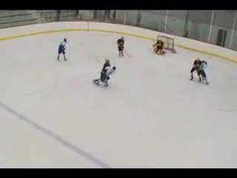 Northwood Hockey vs Calvin College, 2008 ACHA DIII...