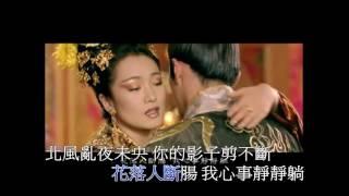 菊花台 ktv 字幕