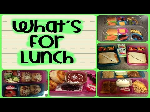School Lunch Ideas - Lunches This Week Ep. 15