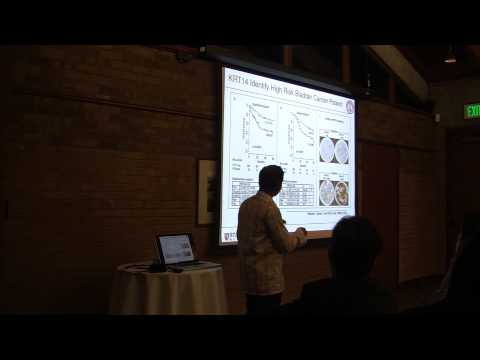 Stanford Talk 5/22/13: Catching Stem and Progenitor Cells with Boolean Logic