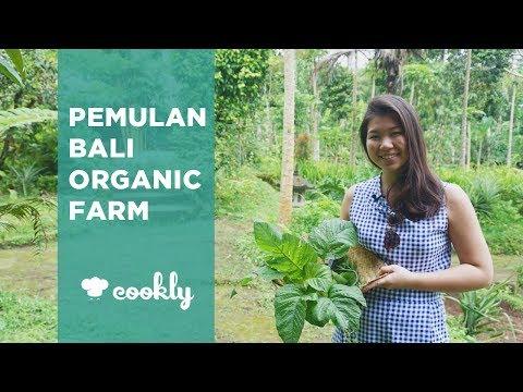 Pemulan Bali Organic Farm Vegetarian Cooking Class in Ubud, Bali
