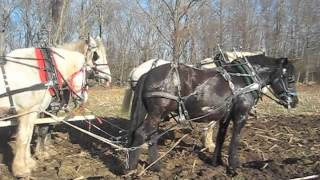 Ohio or Midwest Amish Style of Four-Up Lines - Cedar Knoll