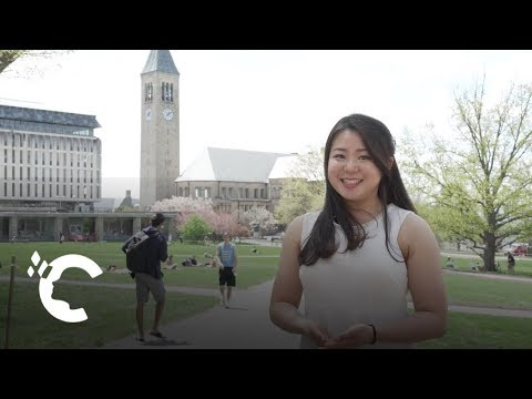 A Day in the Life: Cornell Student