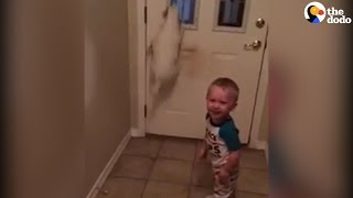 Boy LOVES Watching His Dog Jump | The Dodo