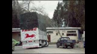 modifiyeli kamyonlar
