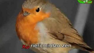Xorieri mintzo zen (Erramun Martikorena)