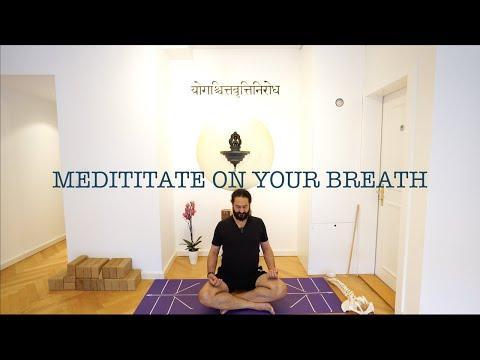 Meditate on your Breath