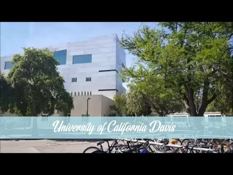 UC Davis Campus Montage | University of California