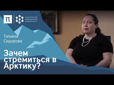 видео: Правовые аспекты освоения Арктики — Татьяна Сидорова / ПостНаука