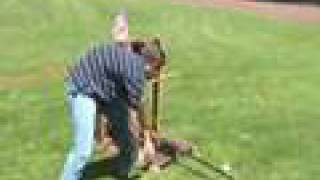 Physics Catapult Project
