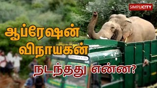 Thrilling and heart-touching story of how elephant Vinayakan was translocated from Thadagam