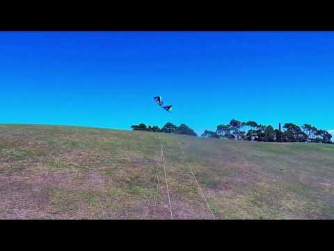 Revolution Reflex XX kite flying Sydney Park - Sydney with Frankie
