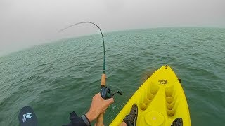 hooked a giant mystery creature through the fog