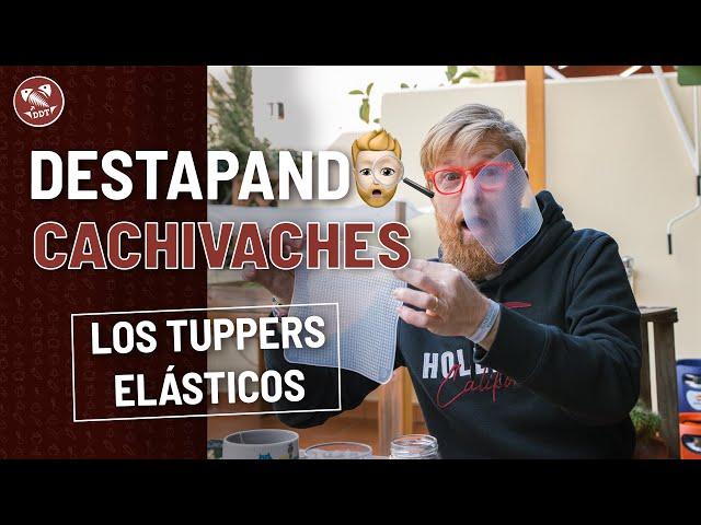 TUPPERS ELÁSTICOS | DESTAPANDO CACHIVACHES