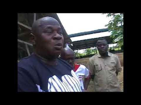 Understanding profitable pig production in Nigeria Practical  1 in  Ogun State