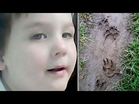 After This 2 Year Old Boy Disappeared, Police Followed Paw Prints Leading Into The Woods