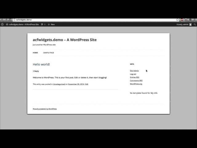 ACF Widgets Plugin Demo