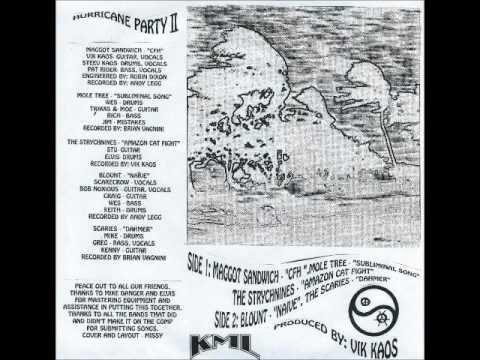 Hurricane Party II