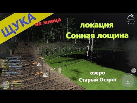 Русская рыбалка 4 - озеро Старый Острог - Полсадка щук