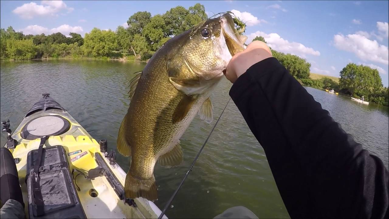 kayak bass fishing san antonio texas youtube