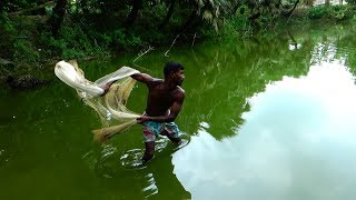 Net Fishing | Catching Fish With Cast Net | net fishing in the village (Part-29)
