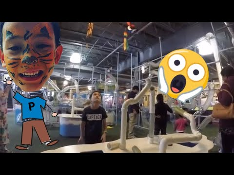 Adventures of Phoenyx - Children's Discovery Museum