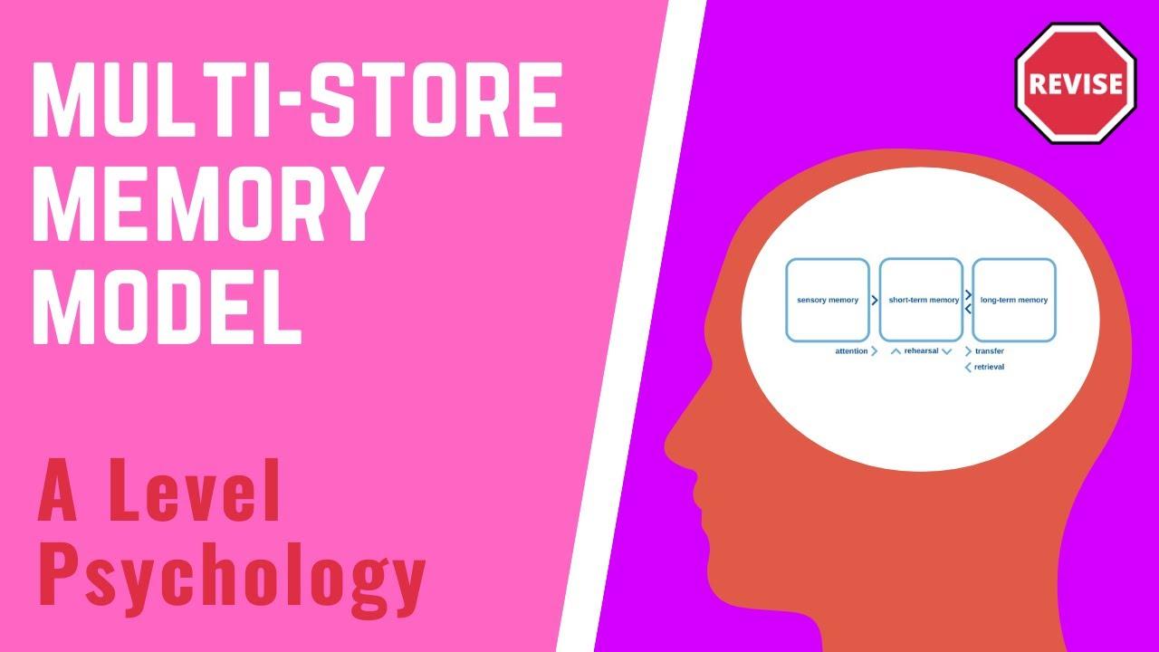 memory model psychology