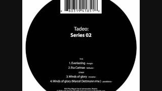 Tadeo - Winds Of Glory (Marcel Dettmann Remix)