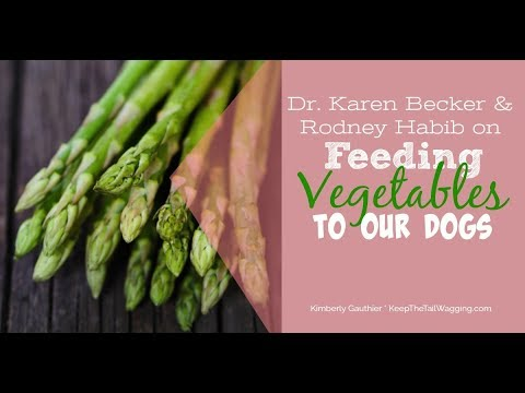 Dr. Karen Becker & Rodney Habib: Feeding Vegetables To Dogs