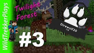 Direwolf20 1.12 | 3 Portals - Twilight Forest | #3 (Modded Minecraft 1.12.2)