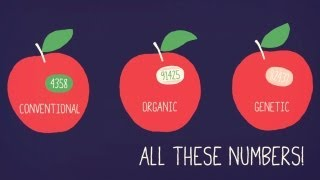 Know Your Produce Codes | A Little Bit Better With Keri Glassman