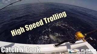 High Speed Trolling | Mahi & Yellow Jack Catch n Cook