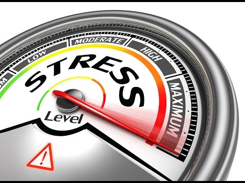 Chronic Stress and Emotional Toxicity