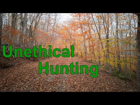 The Pain Of Unethical Hunting